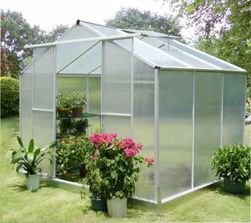 Elite 6ft Wide High Eaves Greenhouse