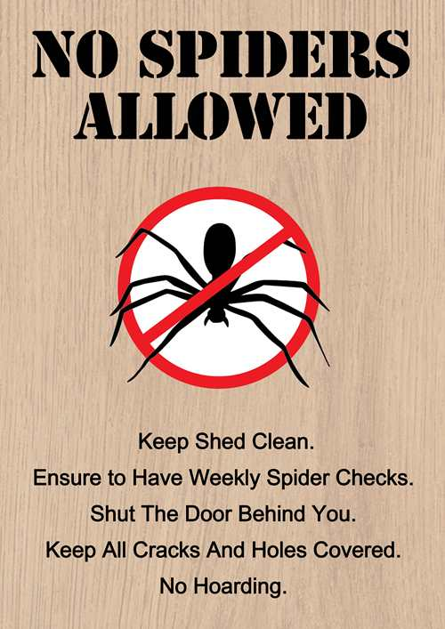 Spider Proof Shed