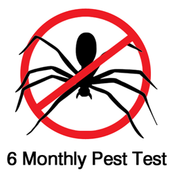 Six Monthly Pest Test